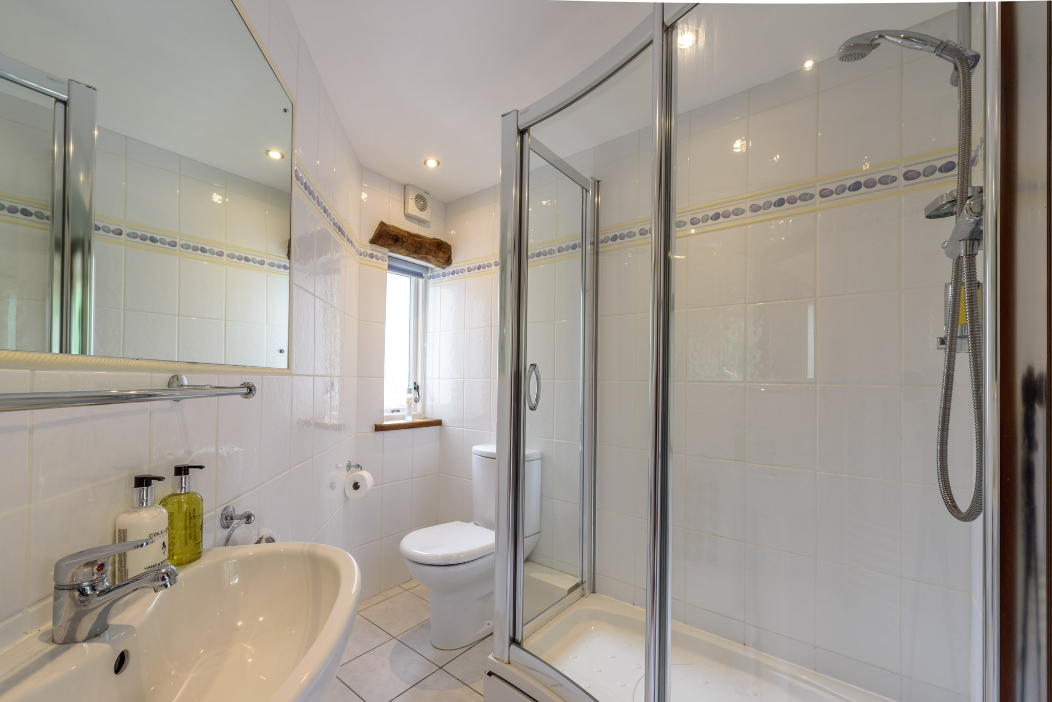 Ground floor modern bathroom with large shower